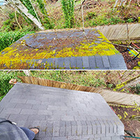 Moss Removal